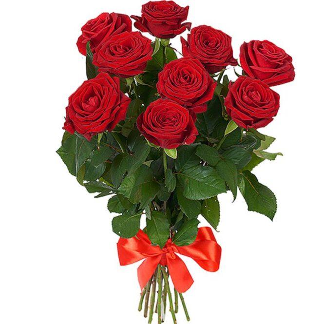 Роза красная 9шт
